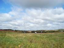 Oronoco Prairie